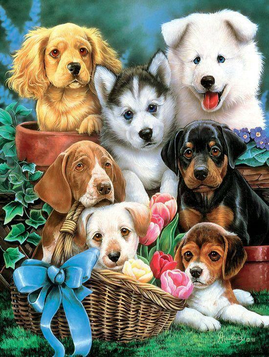 cuadro con perritos tiernos